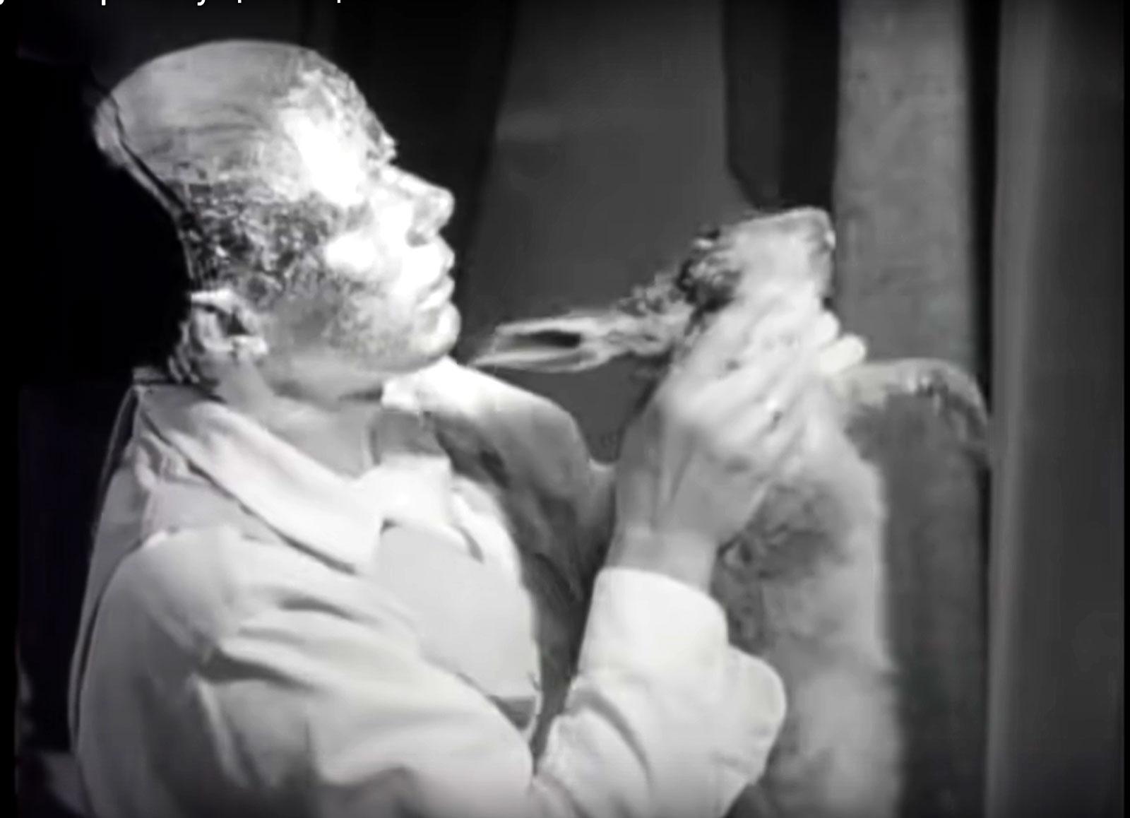 Beuys Wie man dem toten Hasen die Bilder erklärt